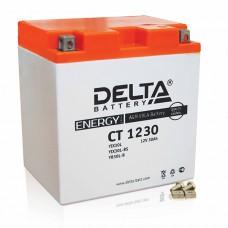 Аккумуляторная батарея 12V30Ah (168x126x175) (залитая, необслуж.) DELTA